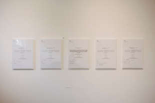 1 x 1 m space, Adrian Tan, Installation
